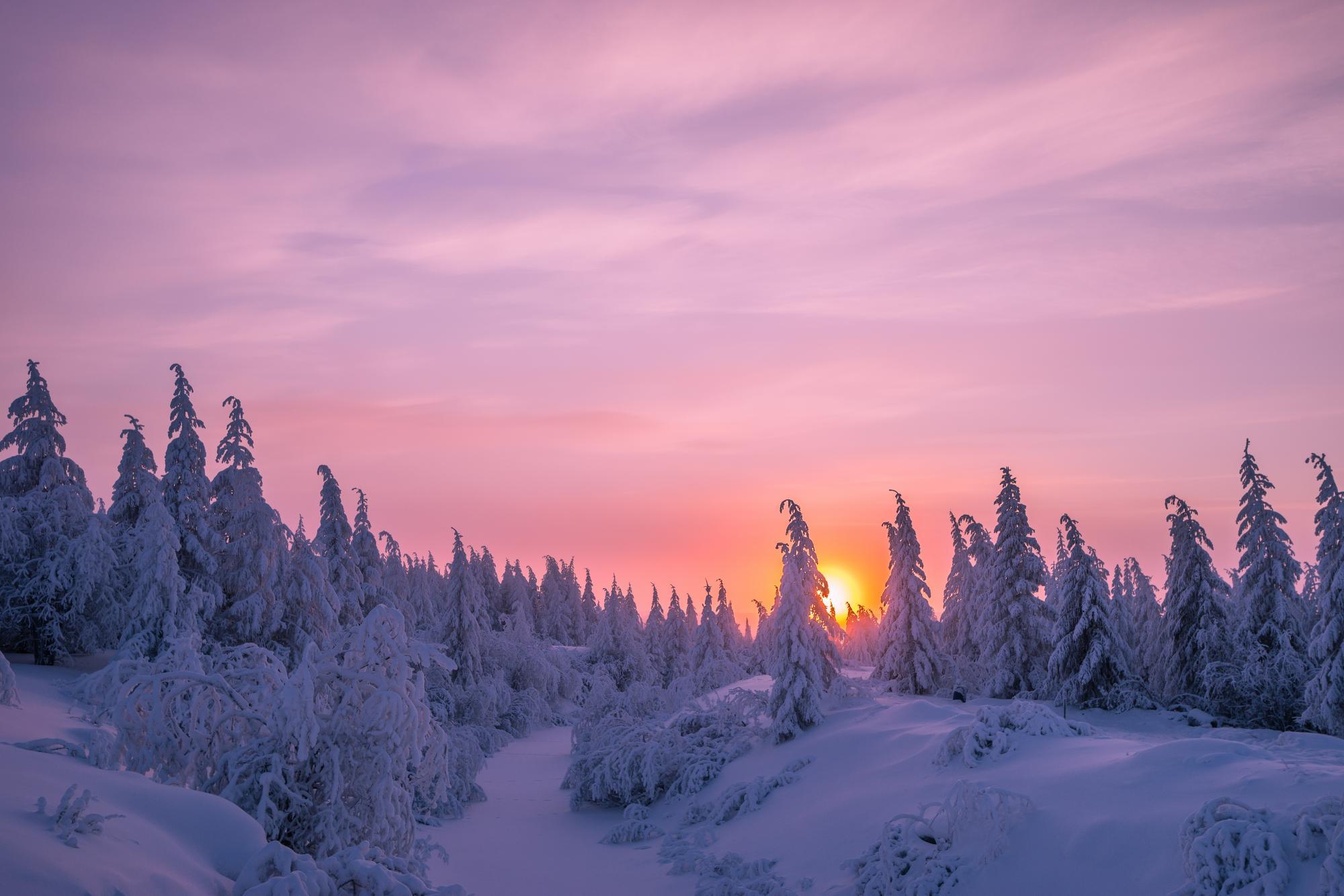 Indian Visa Uk >> Lapland